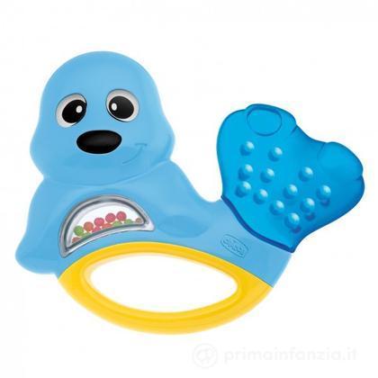 Massaggiagengive foca