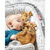 Cullina Cozy Nest Plus Dreamy Dots Grigio
