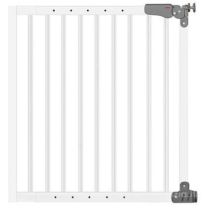 Cancelletto doppio fissaggio T-Gate Active Lock metallo