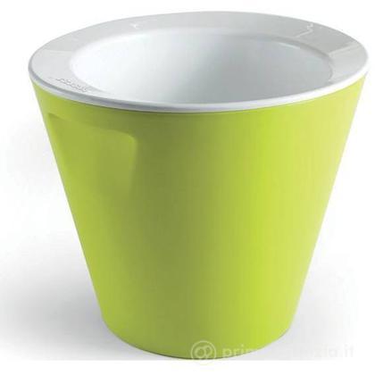 Vaschetta Bano